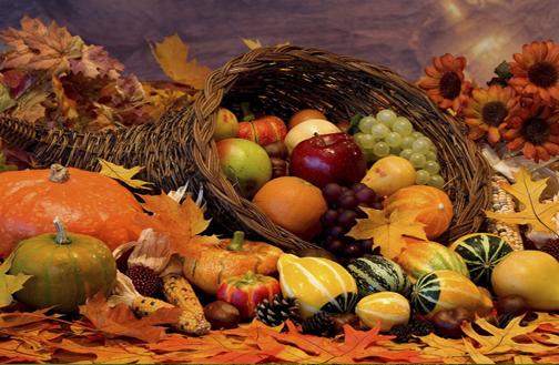 Разсадник, овощни дръвчета, плодови дръвчета,производство на посадъчен и овощен материал и внос от Италия и Гърция